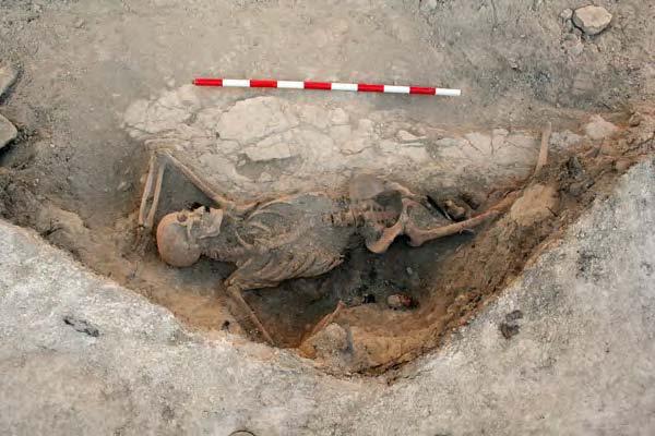 Imagen de la excavación de los restos de Charlie en la trinchera de Raïmats (La Fatarella). Fuente: CSIC